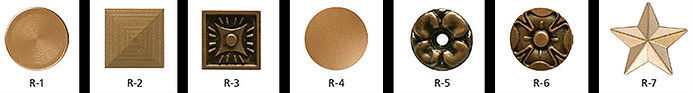 plaque rosette screw covers