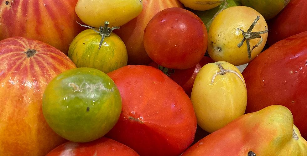 Tomates anciennes panachées - 1KG