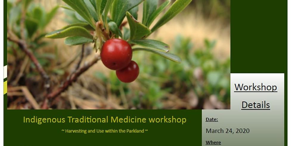 Indigenous Traditional Medicine Workshop