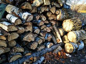 The Sloppy Woodpile