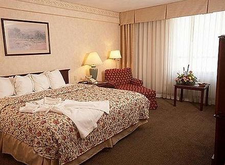 hotel_rooms3.jpg