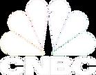 224-2240436_seth-harris-cnbc-logo-white-