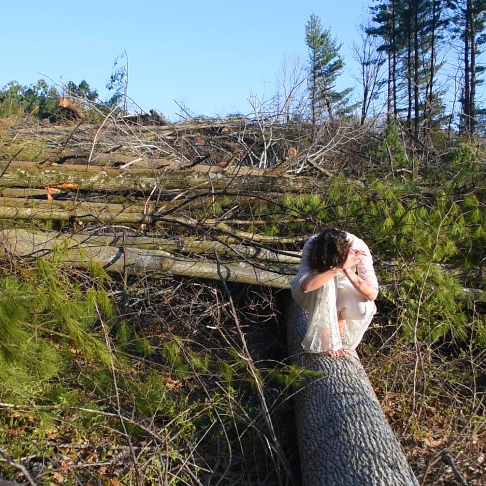 Empath II (felled tree dance)