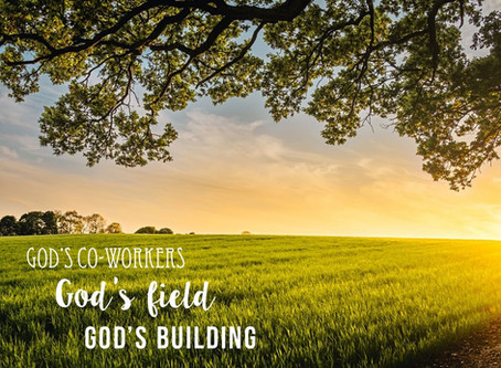 God's Co-Workers, God's Field, God's Building