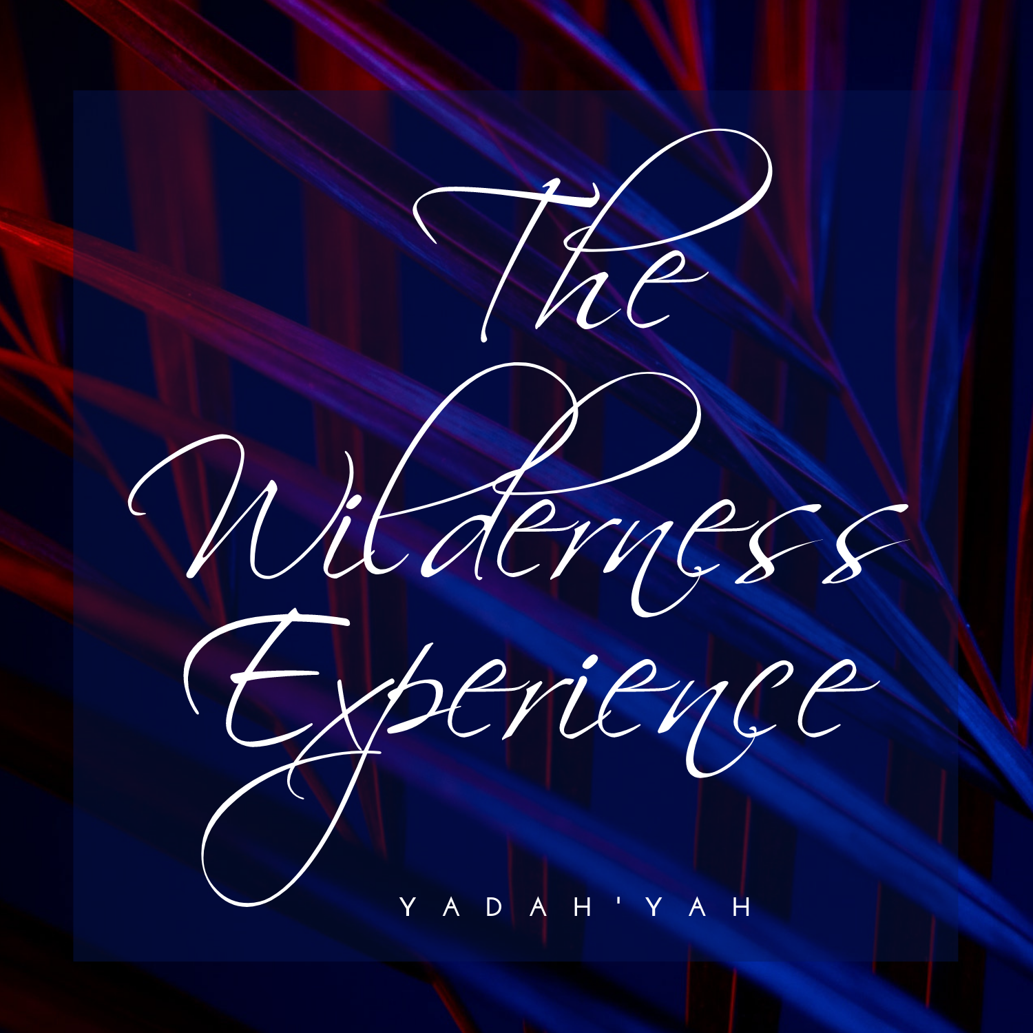 Yadah'Yah - The Wilderness Experience CD