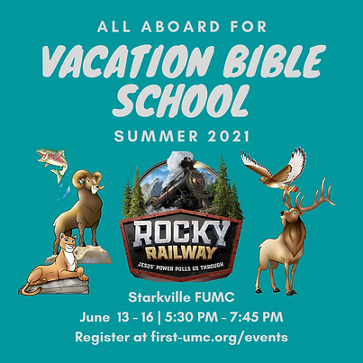 VBS 2021 Info Graphic (1).png
