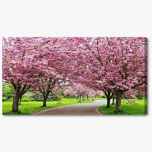M1317 - Quadro moderno viale con alberi in fiore