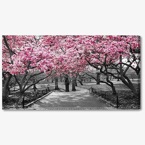 M1285 - Quadro moderno viale con alberi in fiore rosa