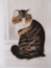 cerone cat_edited.jpg