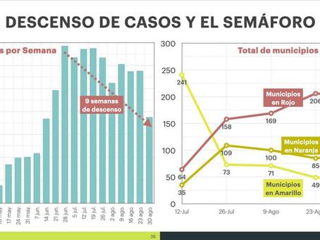 LOS CASOS DESCIENDEN PERO EL SEMÁFORO NO