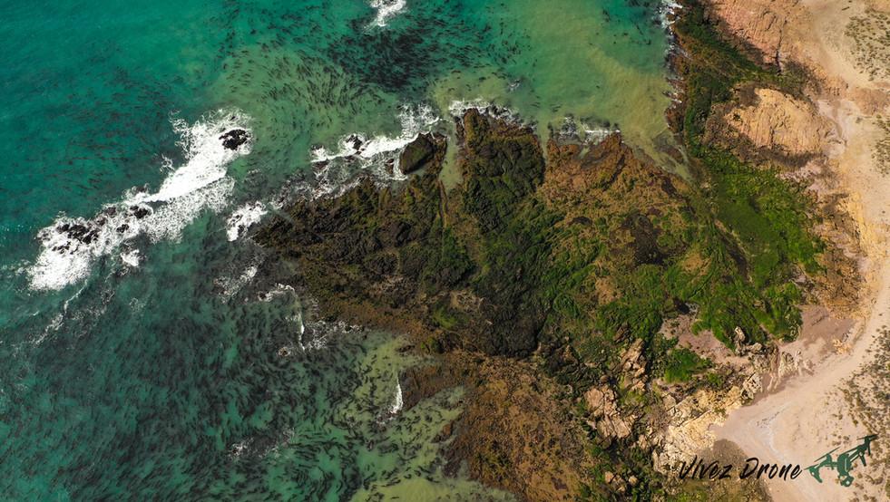 Ocean Pacifique en drone