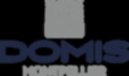 030 - Logo pyramidal fond blanc RVB.png