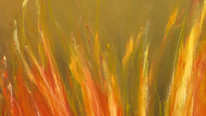 Combustion 1.jpg
