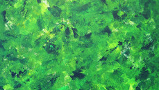 Shades of green 1.jpg