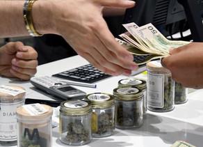 France :Le cannabis thérapeutique officiellement autorisé pour une expérimentation sur des patients