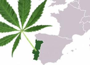 Portugal :Légalisation du cannabis. Premiers pas pour un marché national au Portugal