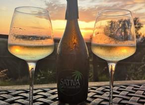 Cuisine :SeccoSativa, le premier vin mousseux au chanvre au monde et ses douces notes vertes
