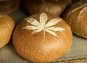 Cuisine :Pain au chanvre - la plante cultivée rencontre la culture du pain