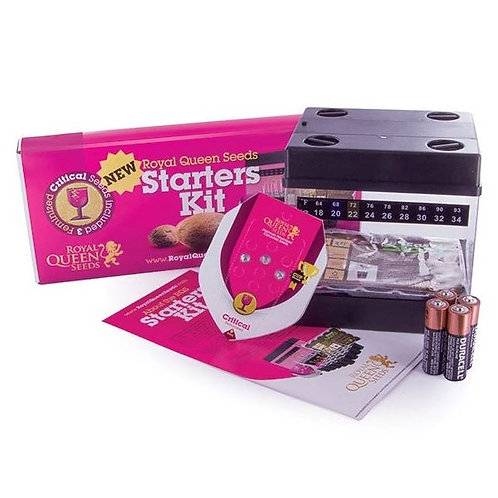 Starters Kit Féminisees