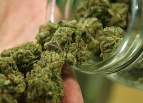 Societe :Quarantaine et cannabis, le cas de l'incertitude de l'Oregon et de l'Italie