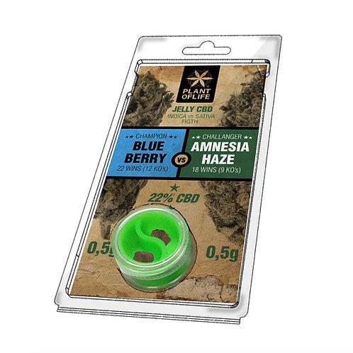 BlueBerry 0,5g vs Amnesia Haze 0,5g jelly 22% CBD