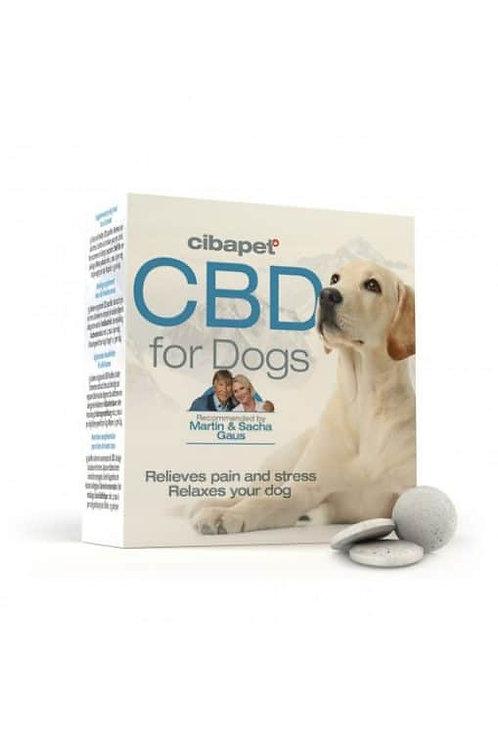 Capsules pour chiens Cibapet