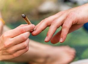 Société :La consommation de cannabis après le travail n'a pas d'impact négatif sur le rendement