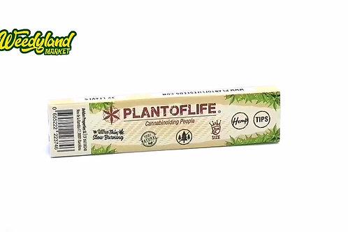 Feuilles a rouler plant of life papiers et filtres King