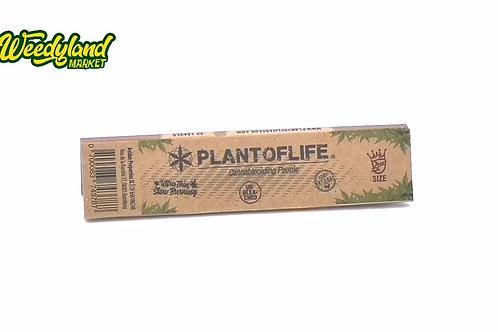 Feuilles a rouler plant of life naturelles