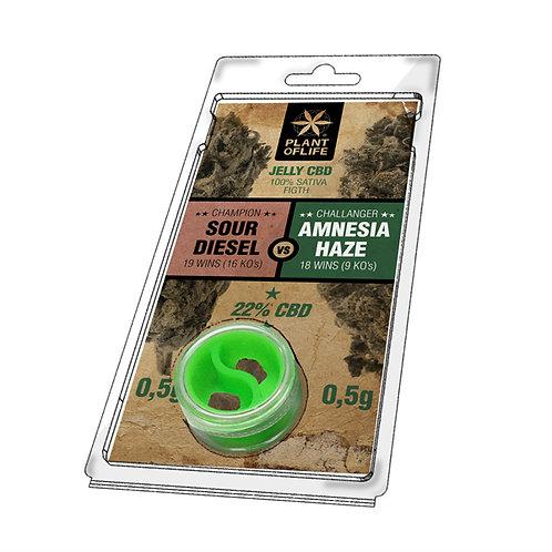 Sour Diesel 0,5g vs Amnesia Haze 0,5g jelly 22% CBD