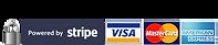 Logo_Secure_Stripe.png