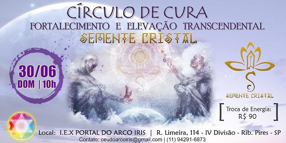 CÍRCULO DE CURA - FORTALECIMENTO E ELEVAÇÃO