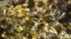 Bildschirmfoto 2017-05-08 um 12.53.44.pn