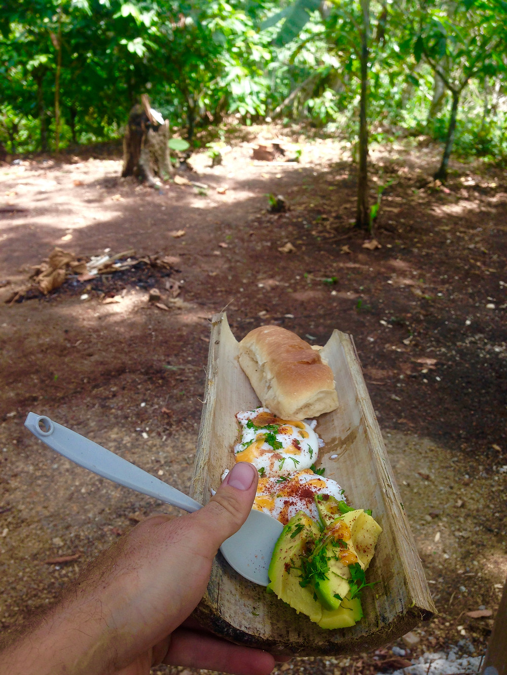 Surfer food served everyday at High Mountain Jungle Finca