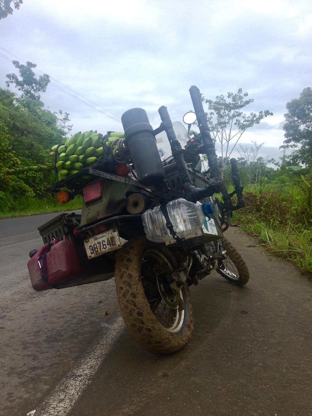 No boring days, mud trails and bananas.