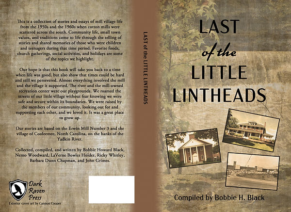 Last of the Little Lintheads cover art