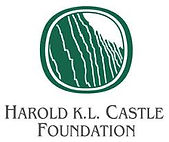 Castle Foundation Logo.jpg