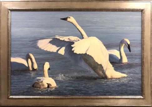 Wingbeats by Kathleen Dunphy