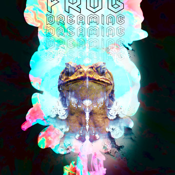 Frog Dreaming 2