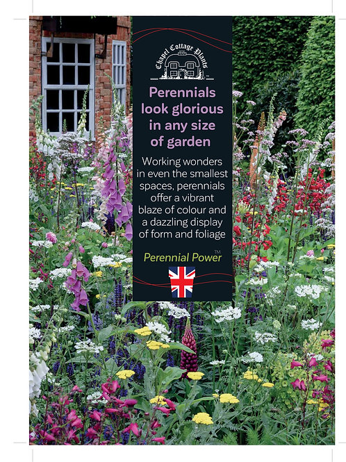 """Perennials Look Glorious In Any Size Garden"" A3 Correx"