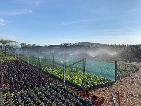Watering Fields.jpg