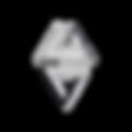 LogoLS_finalStony-.png