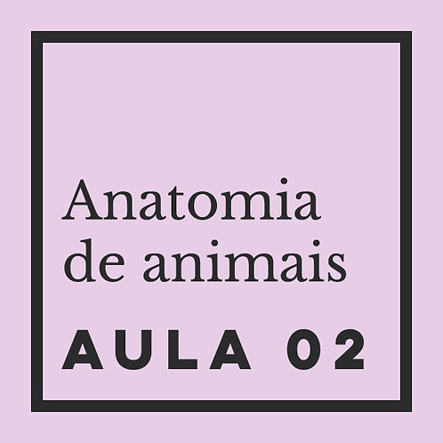 AULA 02: Caninos - domésticos & selvagens