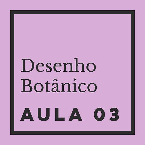 AULA 03: Folhas - Modificação, disposição & composição