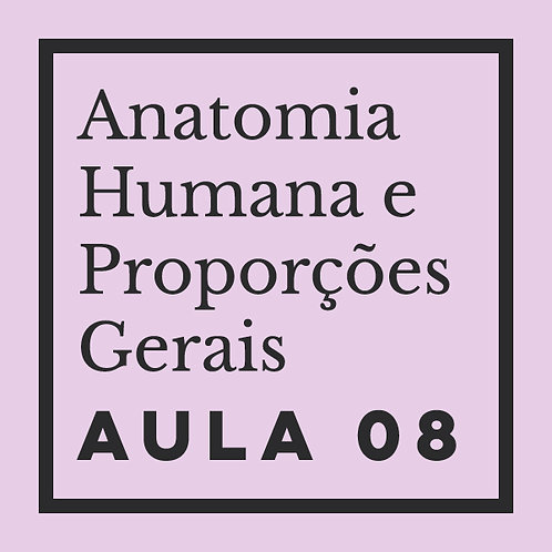 AULA 08: Orelhas & Nariz