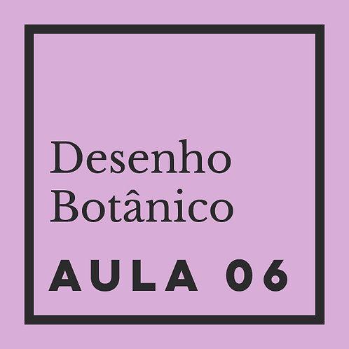 AULA 06: Flores - Fórmulas de peônías, lótus & girassol