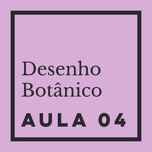 AULA 04: Flores - Morfologia básica & movimentos