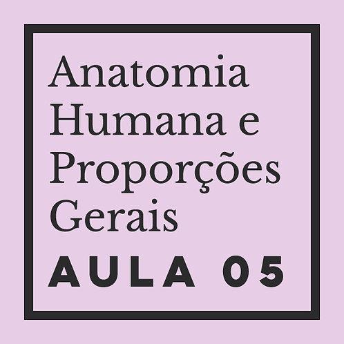 AULA 05: Pernas - estrutura óssea & muscular