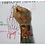 Thumbnail: AULA 02: Mãos: estrutura óssea & ângulos