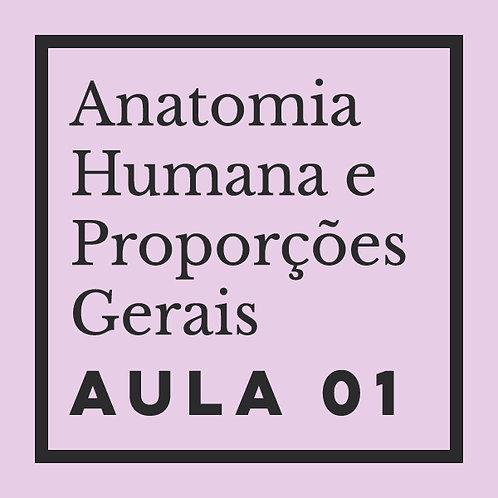 AULA 01: Estrutura & proporções gerais do corpo humano